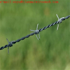 Good Used barb wire in Protecting Fields  barb wire fence for prison