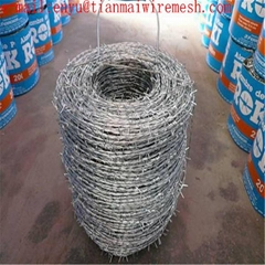 galvanized steel coil barb wire mesh fence