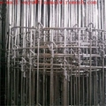 galvanized 1.65m fixed knot wire deer
