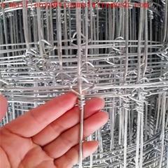 galvanized Fixed Knot Wo