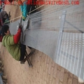 stainless steel rope wire net aviary zoo mesh animal fences