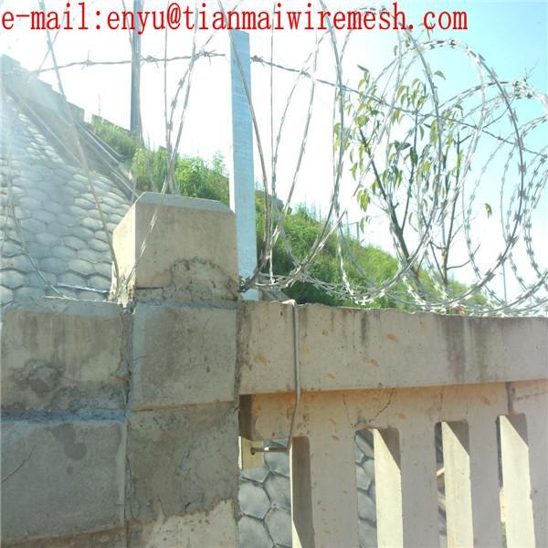 ga  anzied razor wire prson fencing  prison wire fence 2