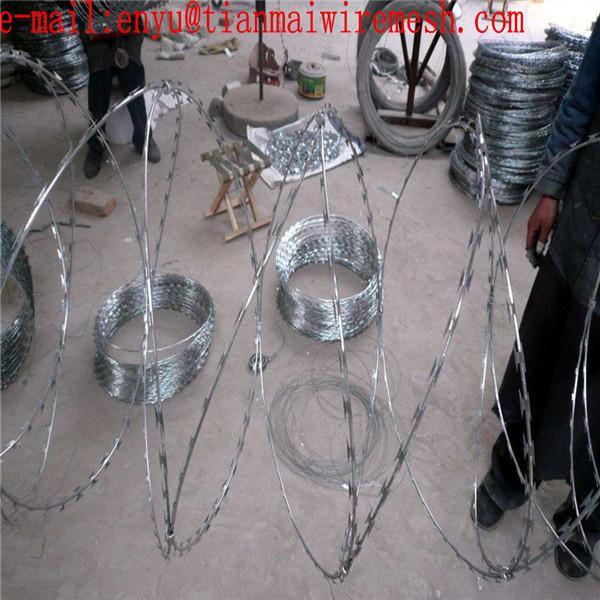ga  anzied razor wire prson fencing  prison wire fence 3