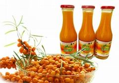 棘康沙棘果汁飲料沙棘汁健康飲品批發