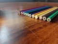 Wooden-Free Plastic 12Color 7Inch Pencil