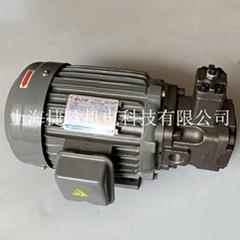 ELITE變量葉片泵VP-40-FA3