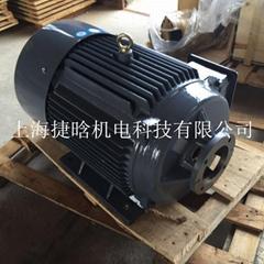 YQB160L-4 15KW三相200/380臥式液壓內軸電機