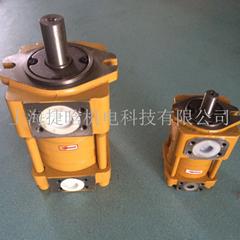 NT5-G125F内啮合齿轮泵上海现货供应