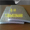 鍍鋁膜 1