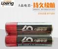 力鵬定製PVC鋰電池