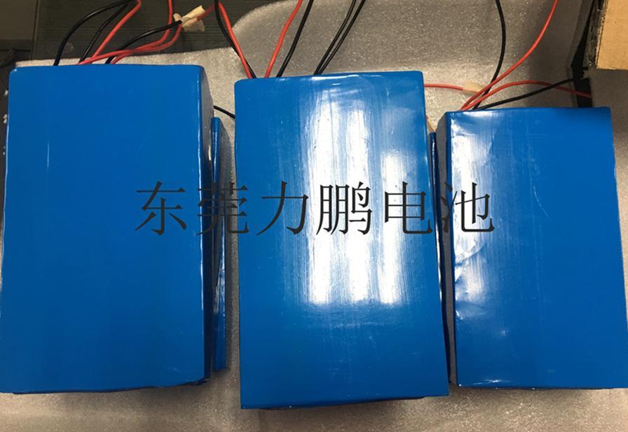 定製型太陽能路燈鋰電池組 3
