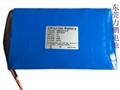12V40AH太陽能路燈用鋰電池組 5