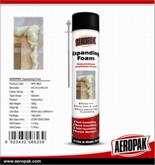 AEROPAK Waterproof Expanding Foam