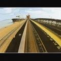 Oil resistant belt