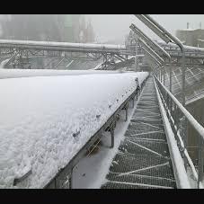 Cold resistant conveyor belt