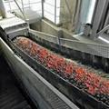 Heat resistant conveyor belt 1