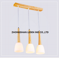 Exquisite Pendant Lamp