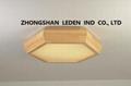 Modern LED Ceiling light