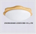 Fashion LED Ceiling Panel Light