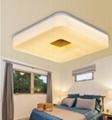 Modern Unique Design LED Ceiling Light
