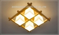 Fashional Interior Ceiling Light