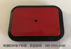 BSJ-2400FC型2.4G有源RFID防拆电子标签