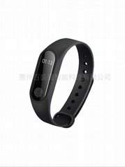 2.4 G Active RFID Smart Handband Electronic Label