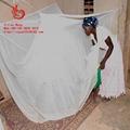 出口非洲含杀虫剂长效防虫蚊帐L