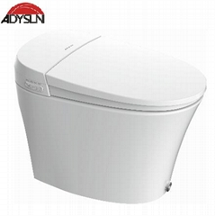 Water-tank-free intelligent toilet T60