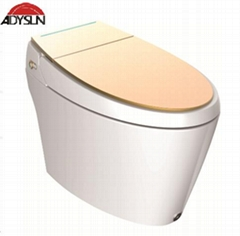 Water-tank-free intelligent toilet G66