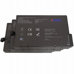 Li2024, Nl2024, Rrc2024 Battery Replacement 14.4V 6600mAh (4ICR19/66-3) Battery