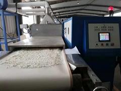 微波乾燥設備