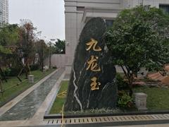 九龍玉切片景觀石