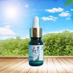 moxa essential oil  Antipruritic mosquito repellent  activating collaterals