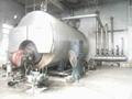 厂家直销黑龙江燃气蒸汽锅炉 4