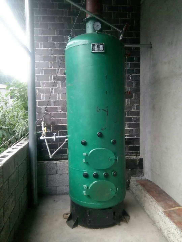 黄山燃煤数控蒸汽蒸菌蒸馒头锅炉 3