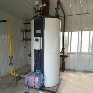 半吨燃气蒸汽锅炉 1