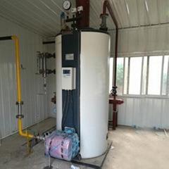 半噸燃氣蒸汽鍋爐