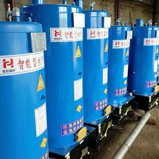半吨燃气蒸汽锅炉 2