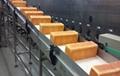 上海合率制造各类塑料网带输送机 4