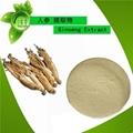 PURE  Panax Ginseng Extract Powder 80% Ginsenosides Energy & Vitality 1