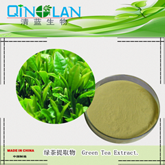 PURE Green Tea Extract Powder 90% Polyphenols 50% EGCG Premium Grade Antioxidant