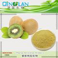 500g Raw Kiwifruit Extract Powder10:1