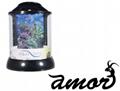 Aqua Terra Fish Tank