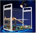 Transparent Fish and Turtle tank
