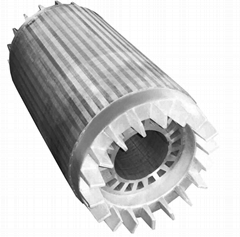 Stator rotor for wind power generator