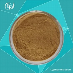 Factory Supply Natural Oleuropein 20%