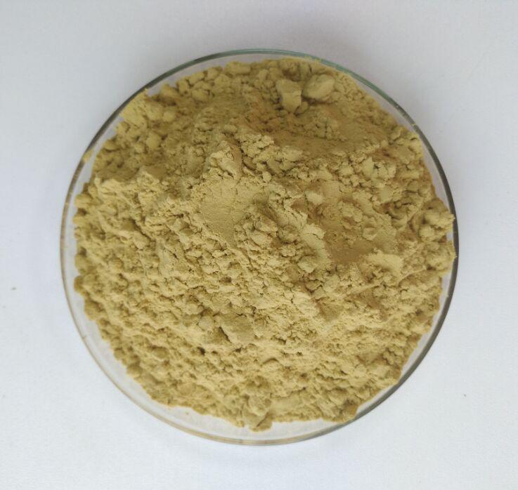 Pure Green Coffee Bean Extract 50% Chlorogenic Acid 1