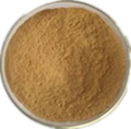 Eucommia ulmoides or green coffee bean extract  25% 98%chlorogenic acid 1
