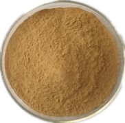 Eucommia ulmoides or green coffee bean extract  25% 98%chlorogenic acid